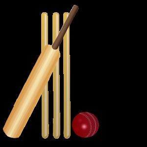 Y5/6 Cricket Coaching
